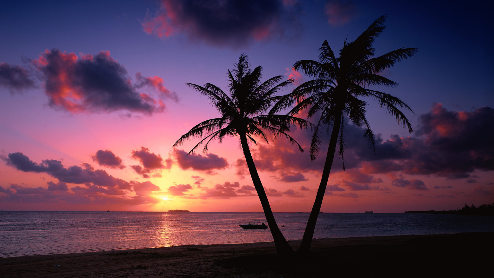 sunset-on-a-tropical-beach78913.jpg