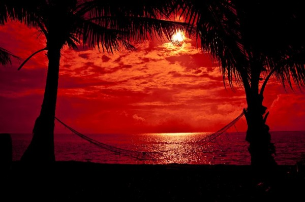 tropical-beach-hammock-sunset-qqcjnbmy.jpg
